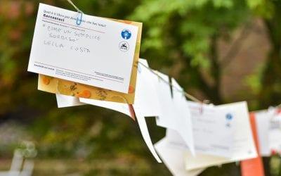 6 Postcard Marketing Mistakes To Avoid